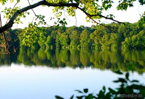 6. Savin Lake-kab