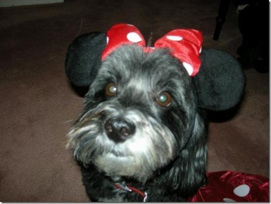 Mickey Ben