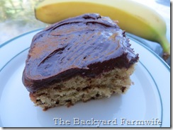 Cocoa Cobana Mocha Banana Cake - The Backyard Farmwife