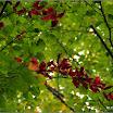2012-baran-dorota-059.jpg