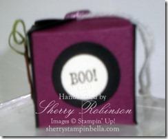 halloween box teresa 005