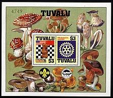 tuvalu5