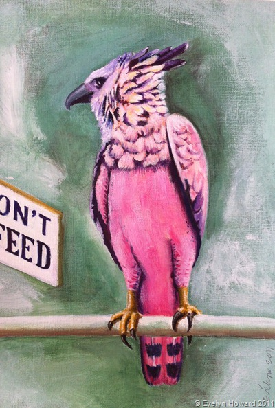 Dont Feed this bird © Evelyn Howard 2011