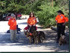 K-9 Dog Search and Rescue Team 001