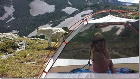 camping-good-bad-019