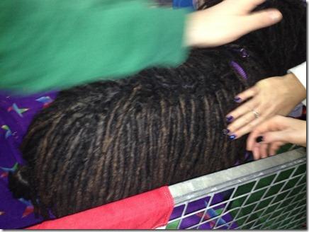 Photo 11-11-2012 13 47 47