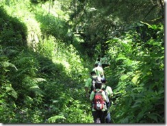 jalur outbound trekking dan hiking