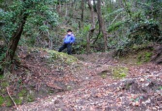 A woodsy walk 21