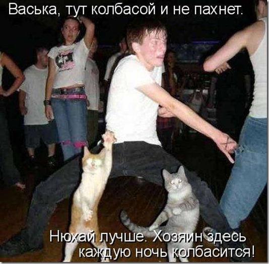 1275829317_kotomatrix_003