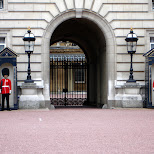 guards at buckingham palace in London, London City of, United Kingdom