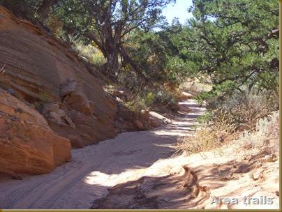 Area trails