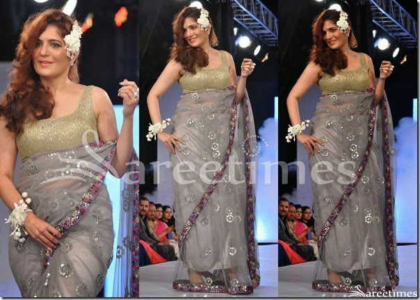 Sonaakshi_Raaj_Embroidery_Net_Saree