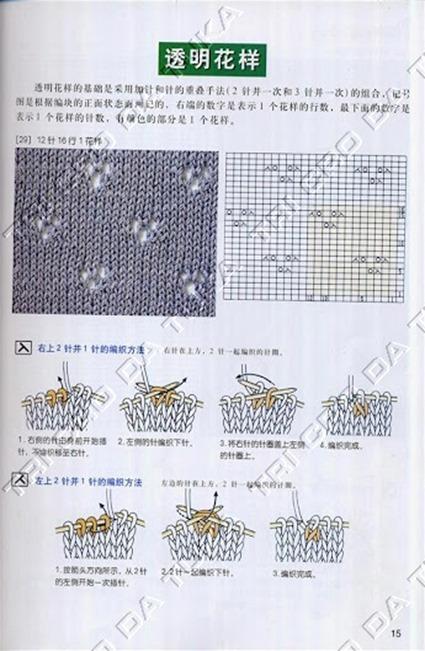 padrão 12