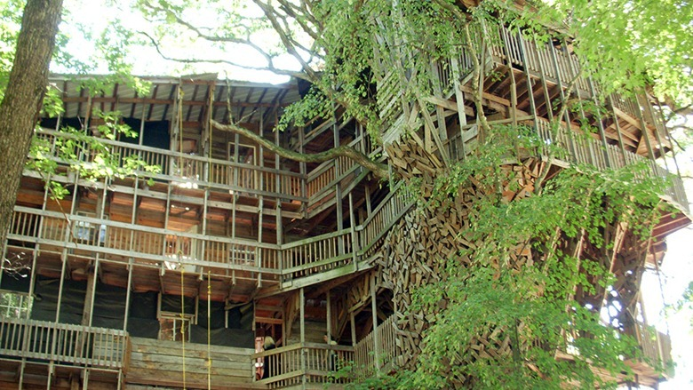 Biggest Treehouse In The World plain biggest treehouse in the world 2016 at bravo farms to design