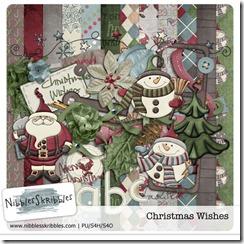 NS_ChristmasWishes