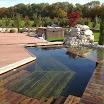 piscine_bois_modern_pool_3.JPG