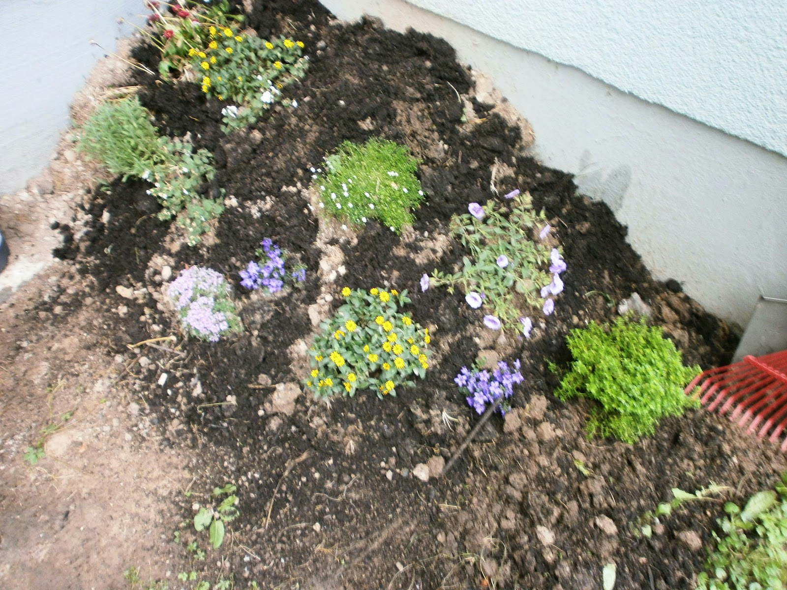 Inspirierend Mein Kleiner Garten Ideen