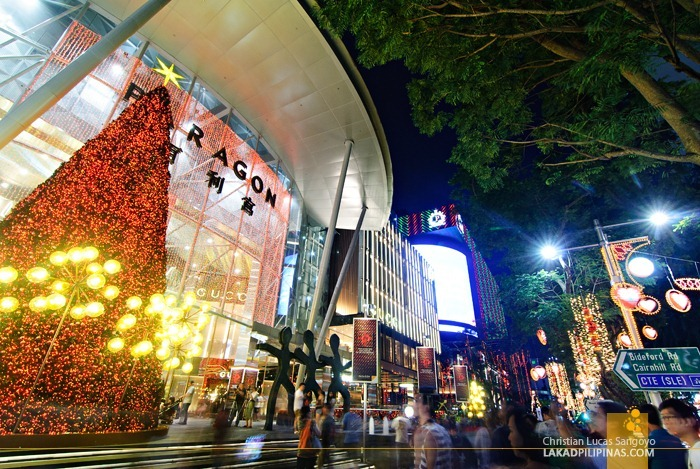 A Giant Christmas Tree at Singapore's Orchard Road