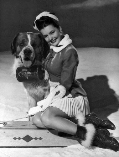 26th September 1946: American actress and dancer Cyd Charisse with a St Bernard dog, which is equipped with a barrel of brandy marked 'Merry Christmas'.