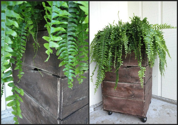 Pallet Planter Collage