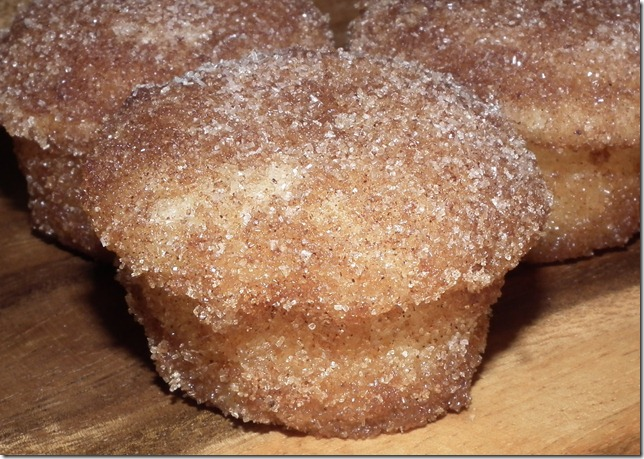 Cinnamon Sugar Donut Mini Muffins 10-15-11