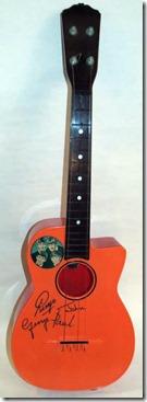 guitar-selcocutaway