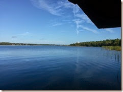 Blue Sky over Lake Tarpon