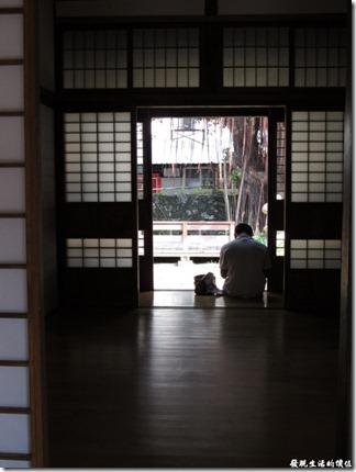 台南-台鹽宿舍。在盛夏期間像這樣坐在屋子邊上看看書,累了就躺著休息,聽著外邊的知了的蟬鳴,享受涼風徐徐,不亦快哉。