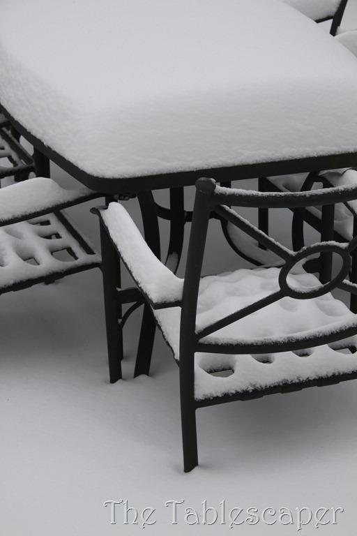 Snow! 301