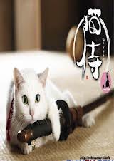 Mèo Võ Sĩ Đạo :Phần 1