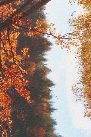 Landscape-1012