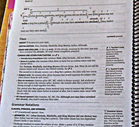 An inside peek into the Teacher's Manuel of Fix It! Grammar