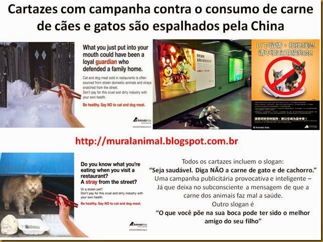 Cartazes com campanha contra o consumo de carne