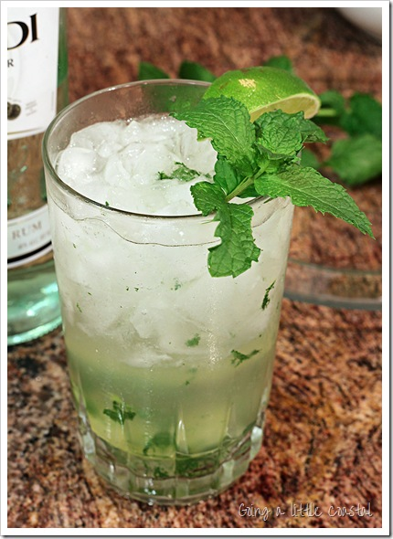 mojito_edited-1