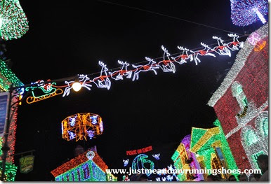 Osborne Family Spectacle of Dancing Lights (10)