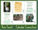 Rain-Forest-Calendar-Connections-web