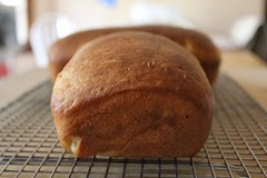water-proofed-bread_183