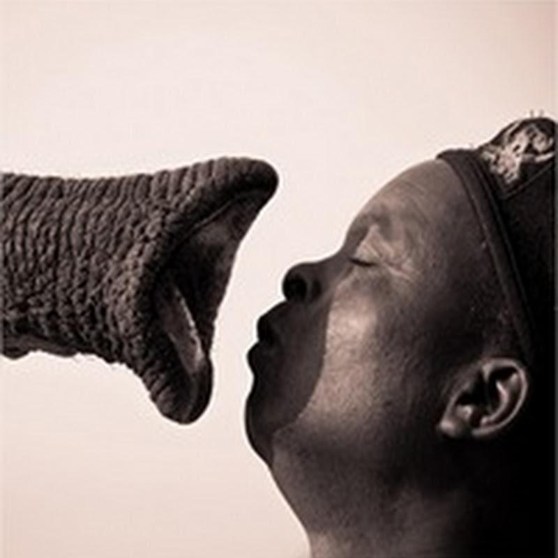 Fotografías del concurso de National Geographic Contest 2011
