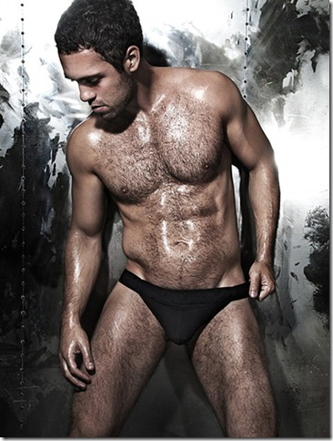 gay hairy1