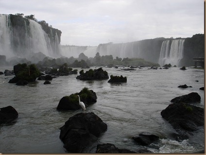 From Curitiba to Iguacu Falls (252)
