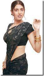 kasthuri_hot_in saree_pic