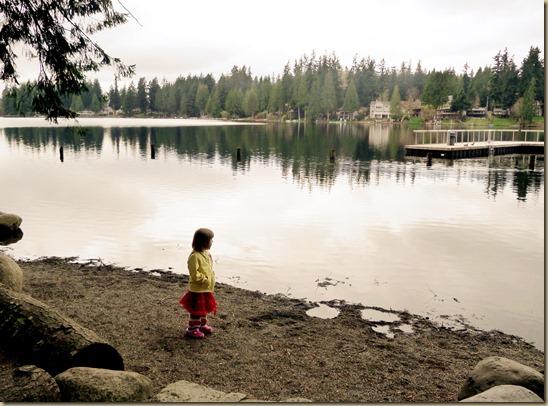 Pine Lake 1 - 15