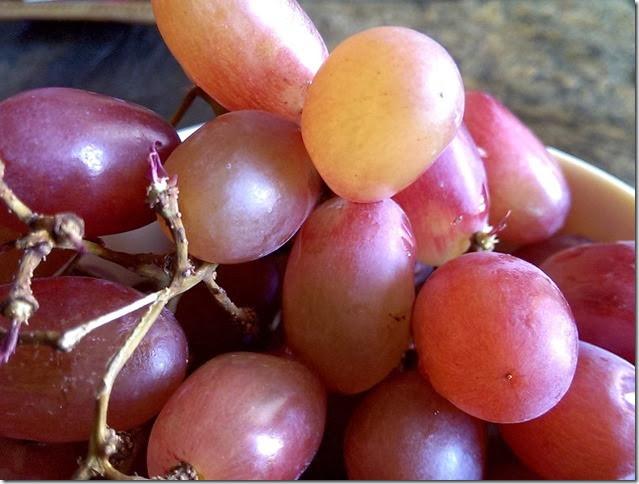 grapes-public-domain-pictures-1 (2240)