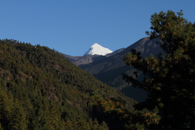 Snow capped Jomolhari Peak as seen from Drugyel Dzong, Bhutan
