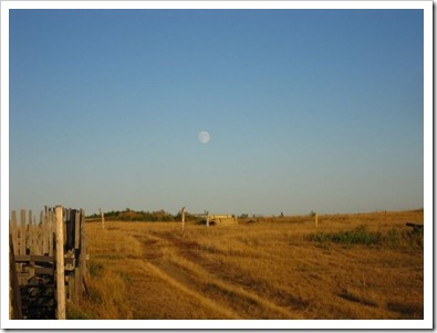 20120829_skjenna-farm_009