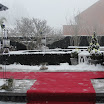 januari 2012 073.jpg