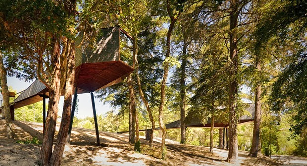 tree snake houses by luís and tiago rebelo de andrade 2