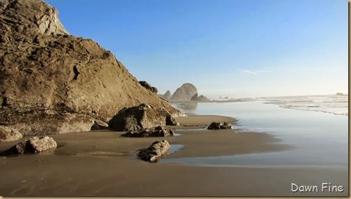 Harris Beach_077