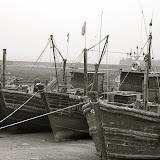 Qingdao - Port de pêche ?