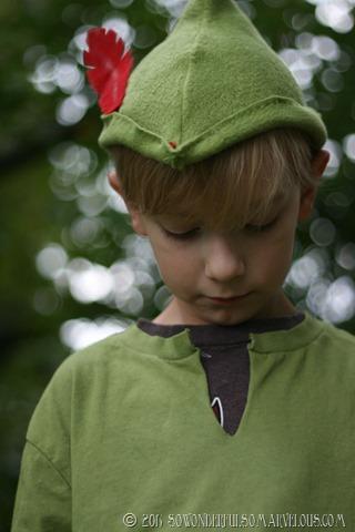 DIY Peter Pan   Tinkerbelle Costume 134